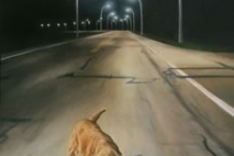 Rover, oil on masonite, 1996