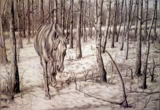 Buck, graphite on paper, 1992