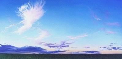 prairie2000g