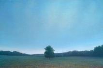 tree_2004g
